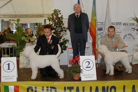 savigno04-12