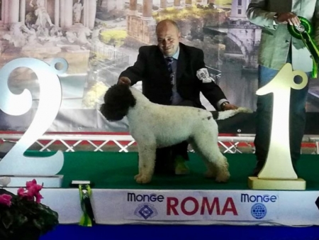 roma18-01